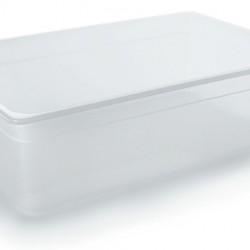 Container 1/1 Polypropylene